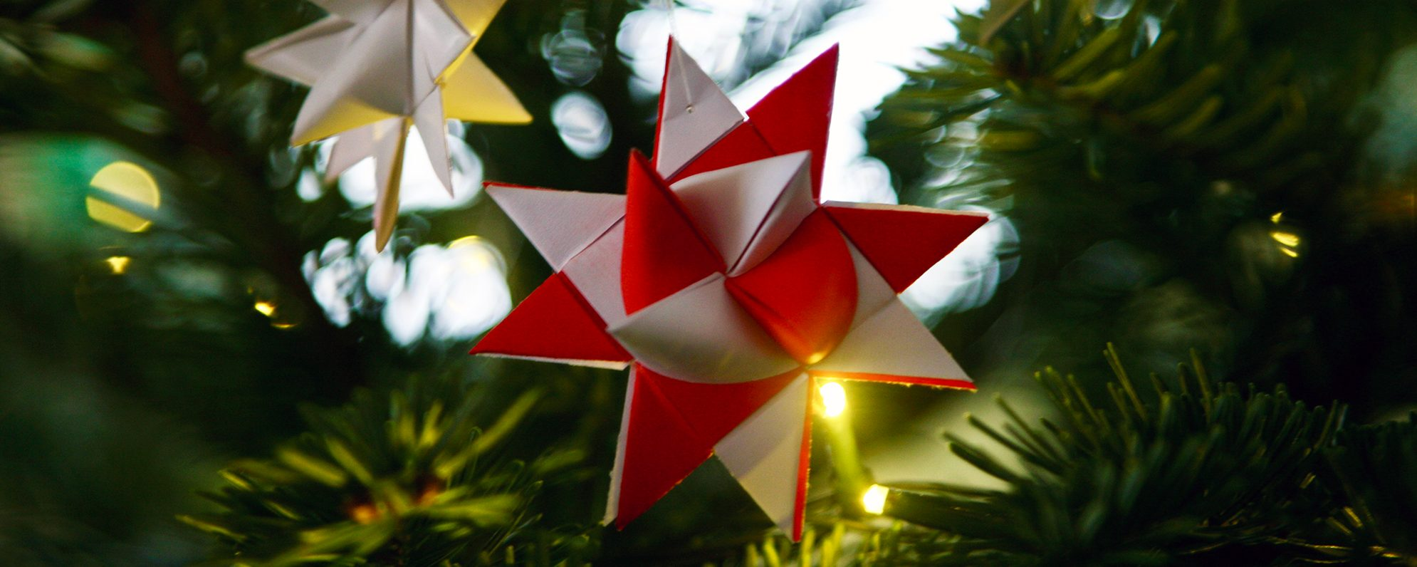 A close up of a white and red folded paper star decoration, handing on a Christmas tree.